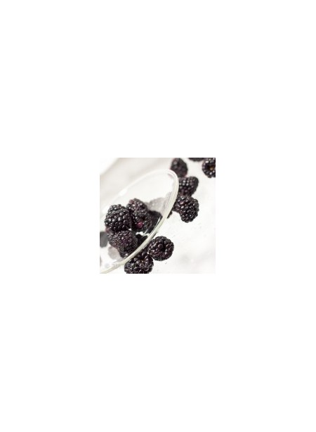 Blackberry Xylitol Powdered Flavor syrup Just Add Water
