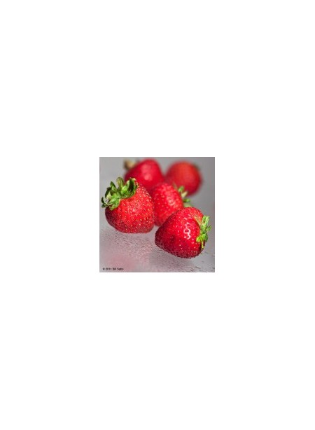 Strawberry Xylitol Powdered Flavor syrup Just Add Water