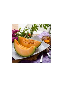 Cantaloupe Xylitol Powdered Coffee Syrup Just Add Water