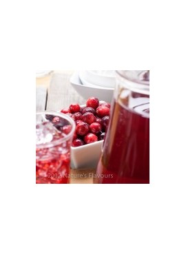 Cranberry Xylitol Powdered Coffee Syrup Just Add Water
